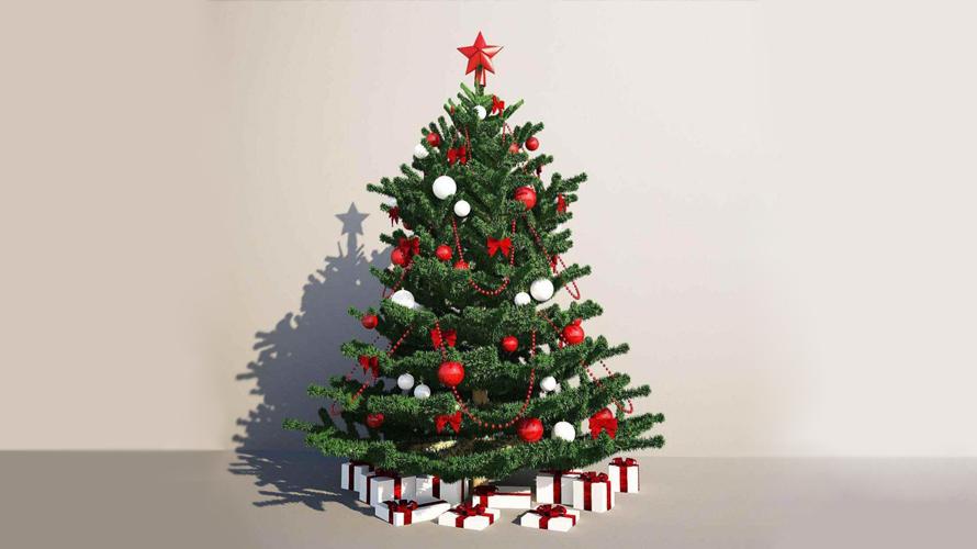کریسمس دو (1)